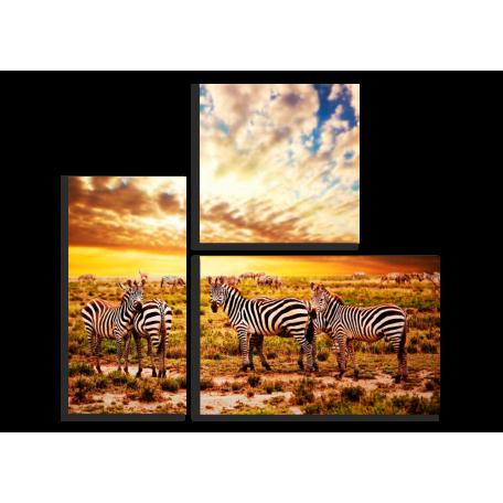 Модульные картины Африканские зебры