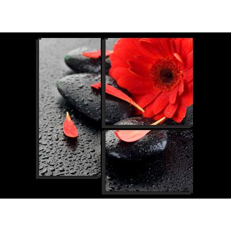 Красный цветок. Дзен