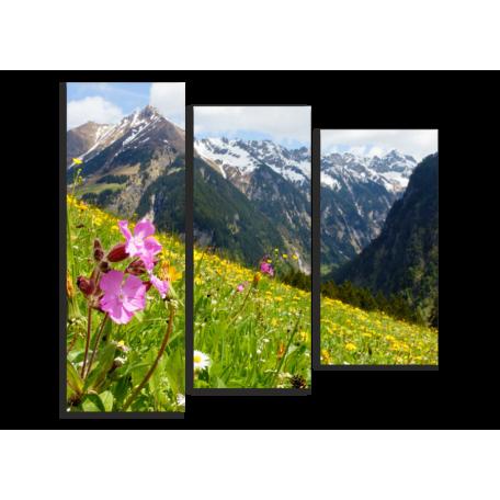 Austrian Alps, цветы