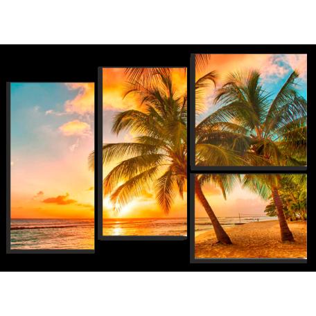 Барбадос пальма