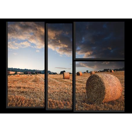 Пейзаж, сено в поле