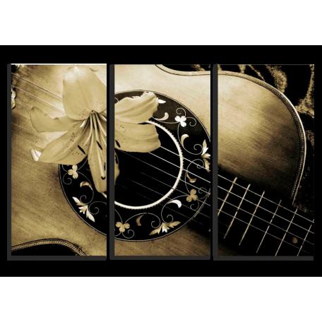 гитара в коричневых тонах